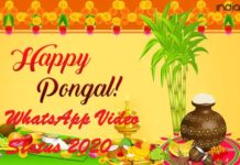 Pongal WhatsApp video status 2020 download
