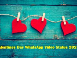 valentines day whatsapp video status 2020