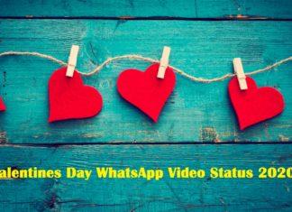 valentines day whatsapp video status 2020