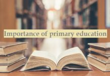 Importance of primary education process