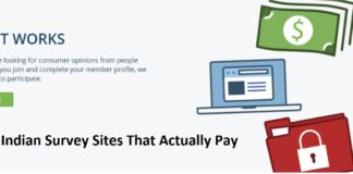 Best Indian Survey Sites That Actually Pay